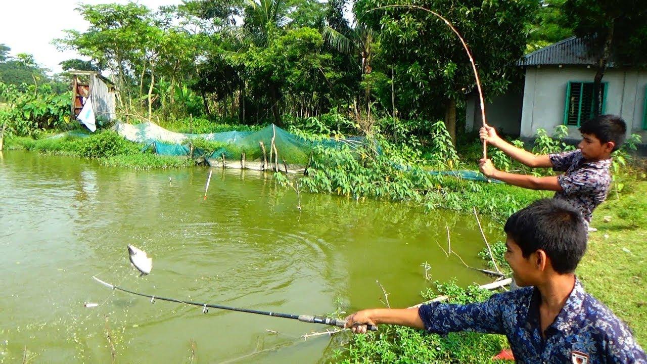 Best Live Fishing Video (Part-94)