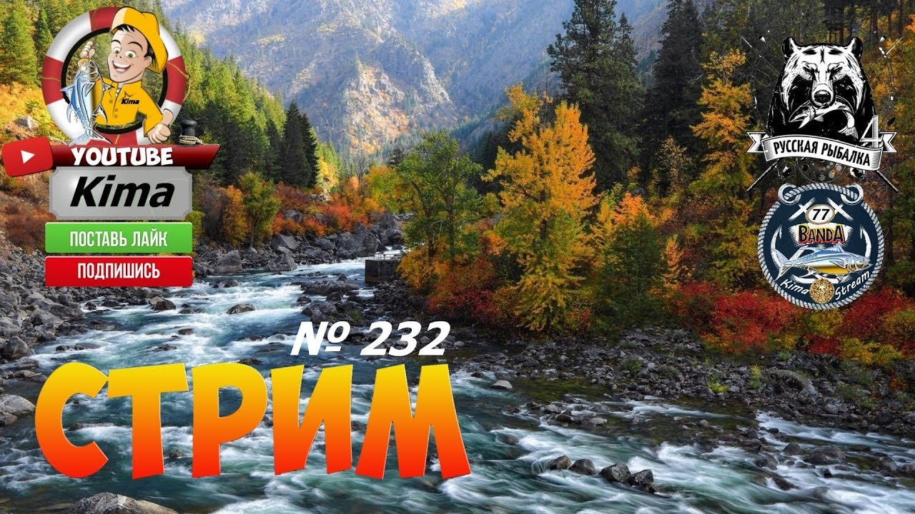 Русская рыбалка 4  — № 232  —  «Где живут трофеи? »  —  Kima STREAM