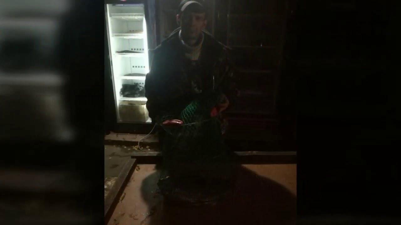 Рыбалка у Бородина! 21 октября 2017г.