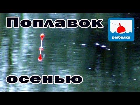 Рыбалка — карась на поплавок и новая задача