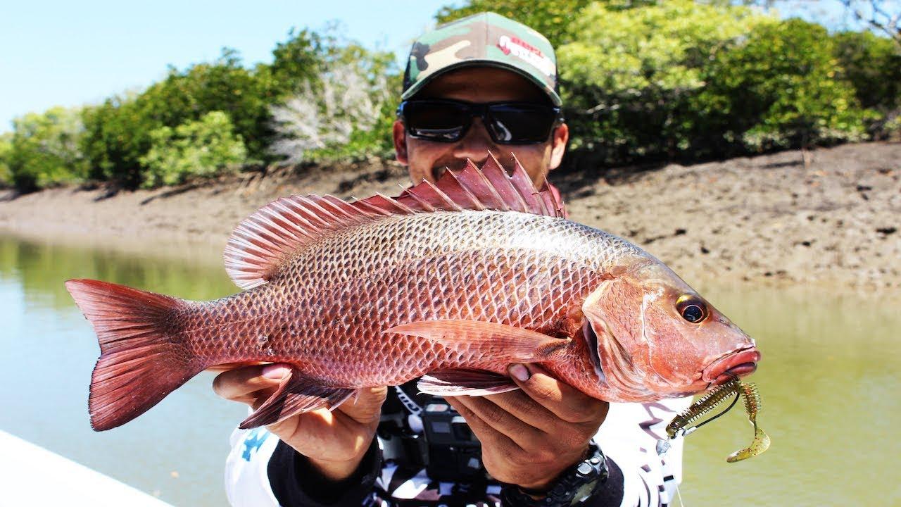 BEST Mangrove Jack Fishing Of My Life!!!!!! l INSANE Mangrove Jack Fishing