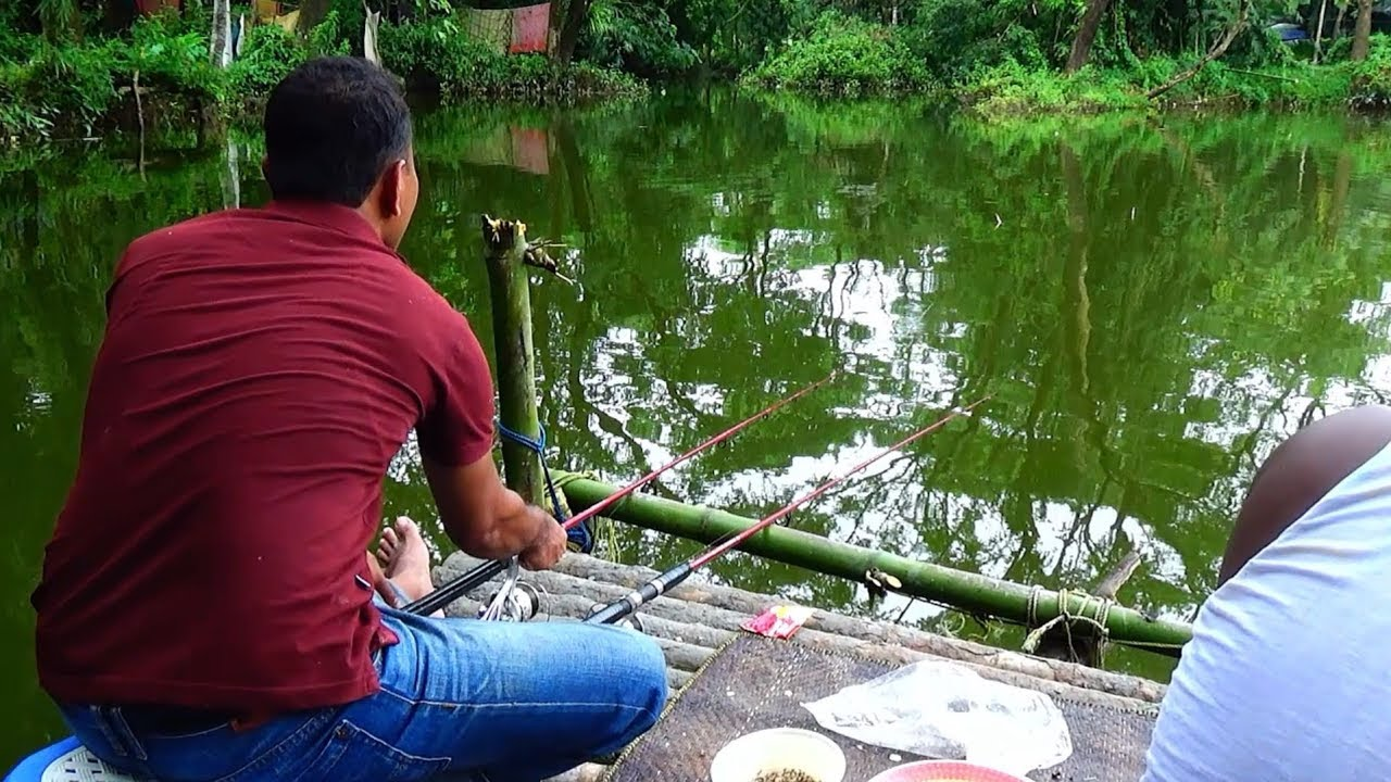 Best Fishing Video | Fishing By Reel (Part-98)