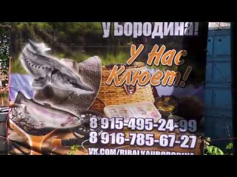 Рыбалка у Бородина 18 08 2018 4K