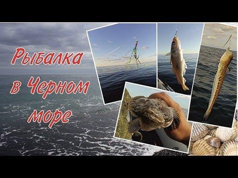 Рыбалка в Чёрном море / Fishing in the Black sea