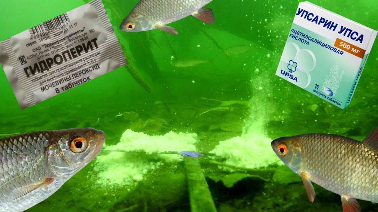 Реакция рыбы на UPSA и ГИДРОПЕРИТ!? Прикормка.Рыбалка. Подводная съемка