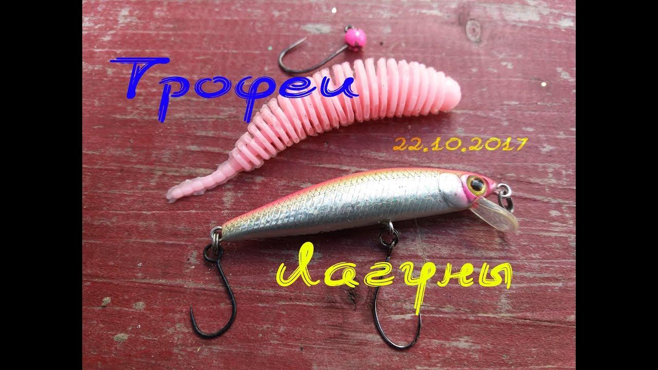 Форелевая рыбалка в ПРиО Лагуна 22.10.2017