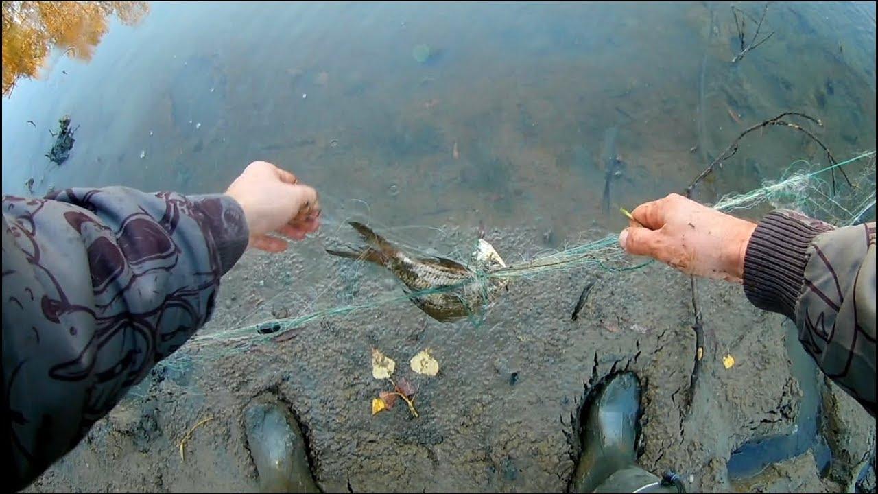 День 2  Рыбалка в Новосибирске  Ловля щуки, окуня, браконьерские сети