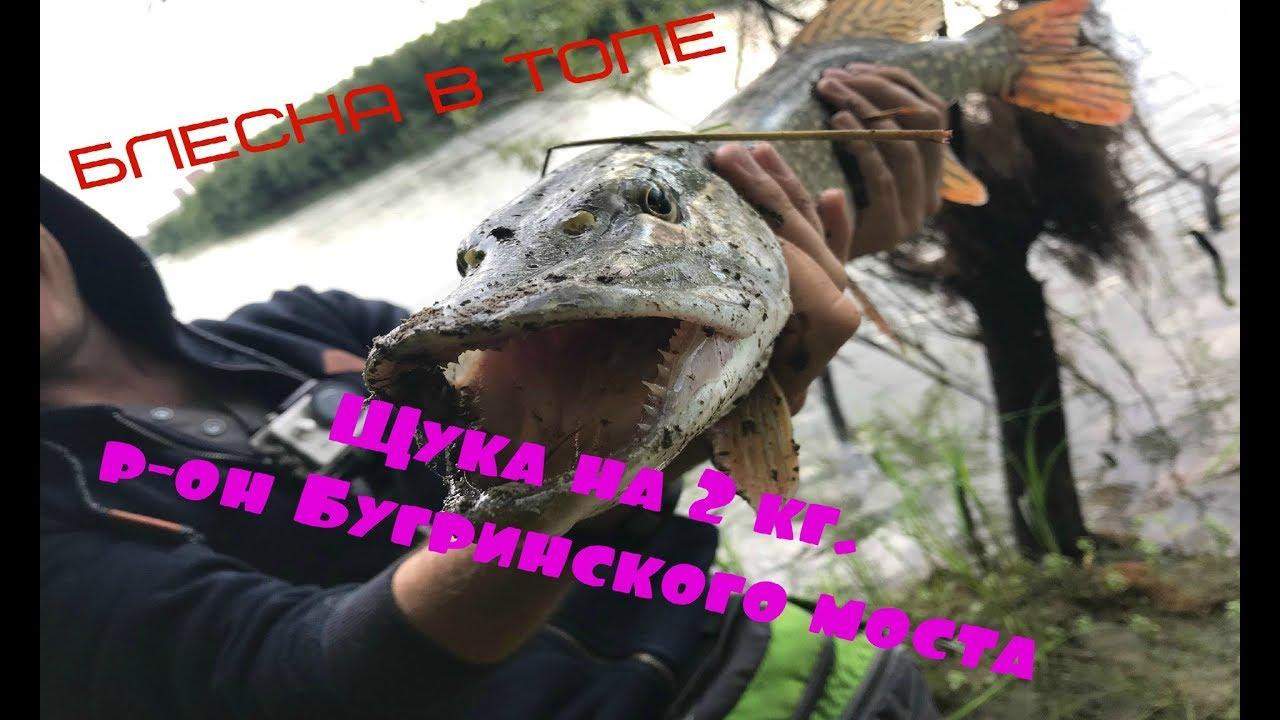 Рыбалка в Новосибирске. Щука на 2 кг. Бугринский мост, р.  Обь.