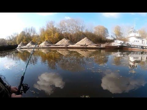 #7октября Рыбалка на Затоне в Новосибирске