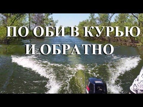 Рыбалка в Новосибирске . По Оби в Курью и обратно.