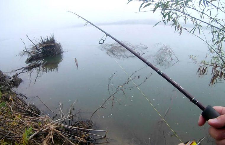 Начало осеннего жора щуки. р. Обь. г. Новосибирск.