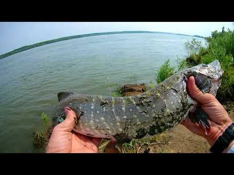 ЖЕСТЬ!!! Вогнал крючёк в палец, по самые не хочу.  Рыбалка на спиннинг г.  Новосибирск, р.  Обь.