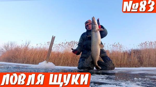 Жор щуки на жерлицы. Зимняя рыбалка на щуку.