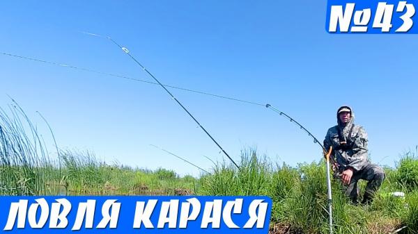 Рыбалка на Донки летом — ПРОБКА, Фидер. Ловля карася на ПЕНОПЛАСТ!