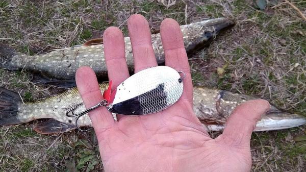 Переставил крючок и блесна заработала! Рыбалка на щуку в октябре