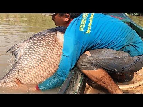 Top 4 Cast Net Fishing — Fisherman vs. River Monsters