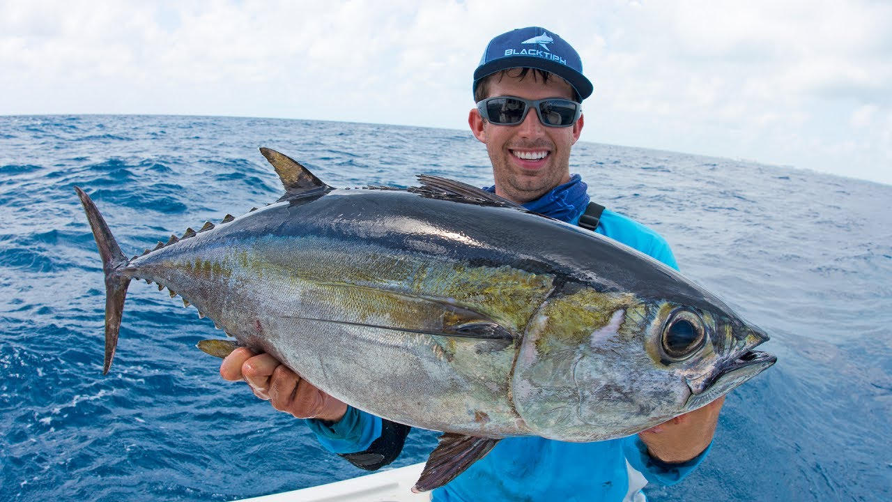 Fishing for Dinner Fish in Miami — 4K