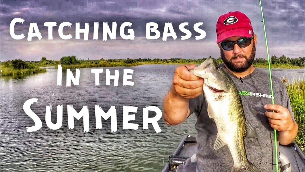 Bass Fishing in the Summer — Only 3 Hours to Fish