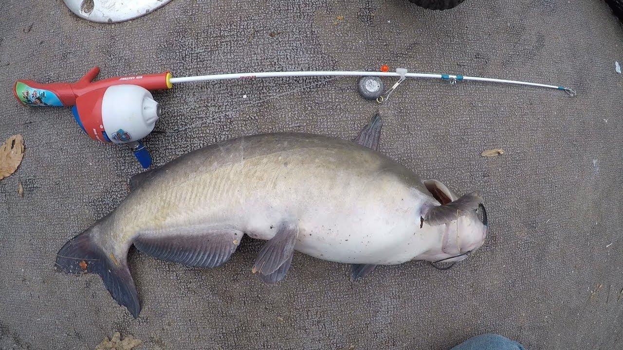 Toy rod fishing challenge — Catfishing with kids