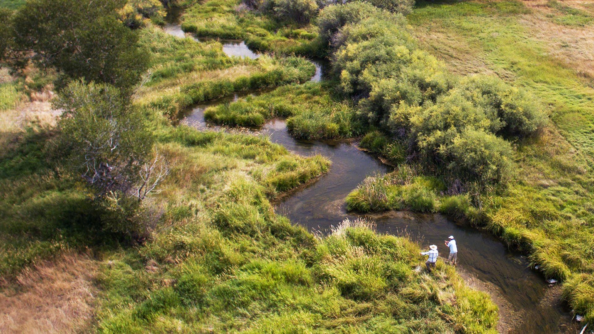 Fly Fishing Film — Spring Creek by Todd Moen