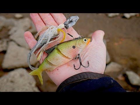 Finding Free Fishing Lures!