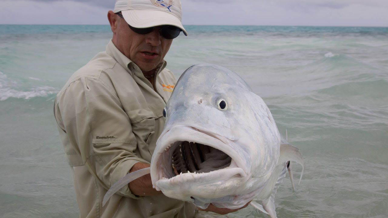 Fly Fishing For GT's On Christmas Island «Mind Blowing Action»