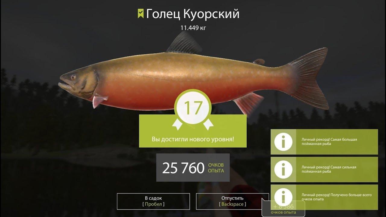 Собираю на лекарства, Команда «Окунь» Русская Рыбалка 4