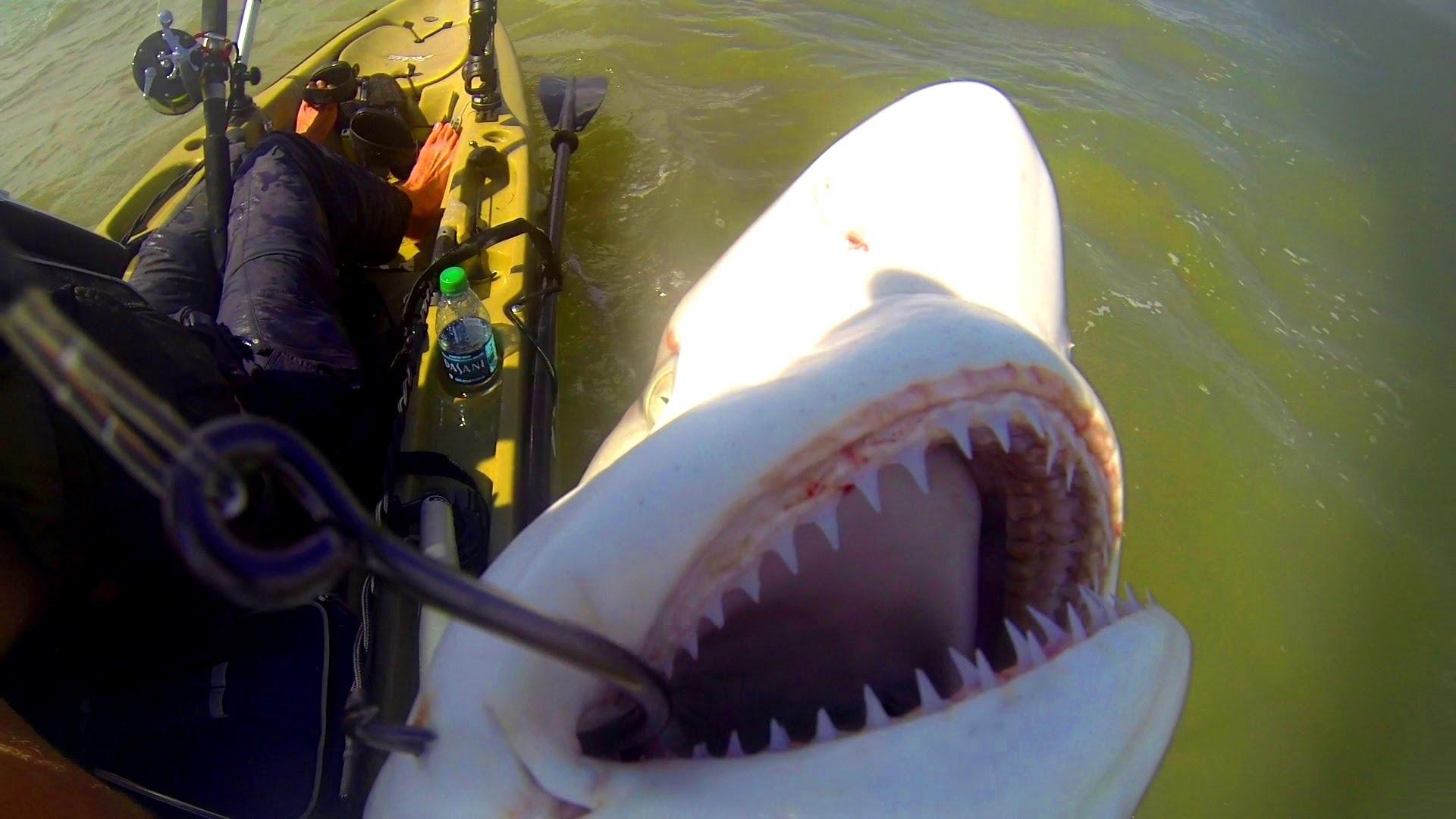Kayak Fishing: Offshore Trip Gone Wrong — Part 3