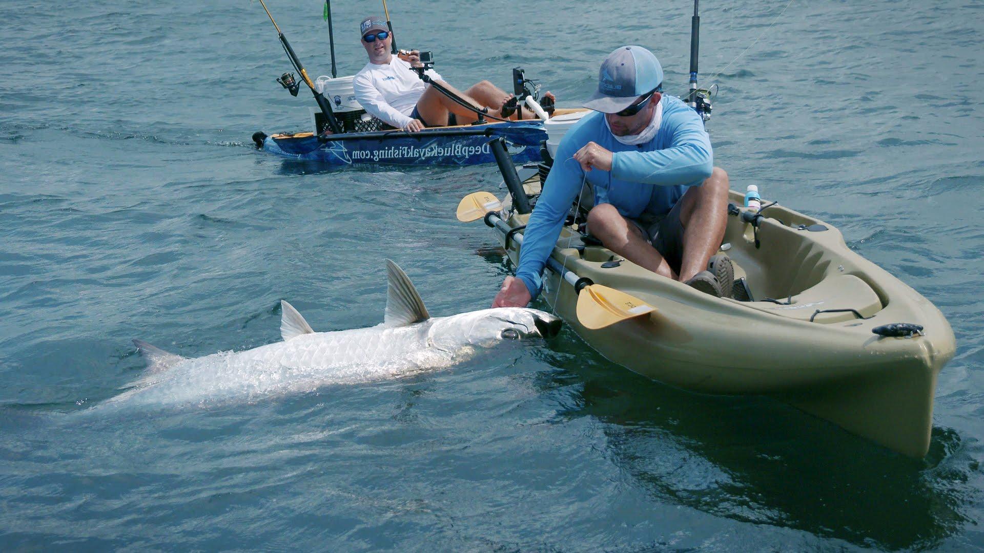 Kayak Fishing — Giant Tarpon and Jack Crevalles — 4K