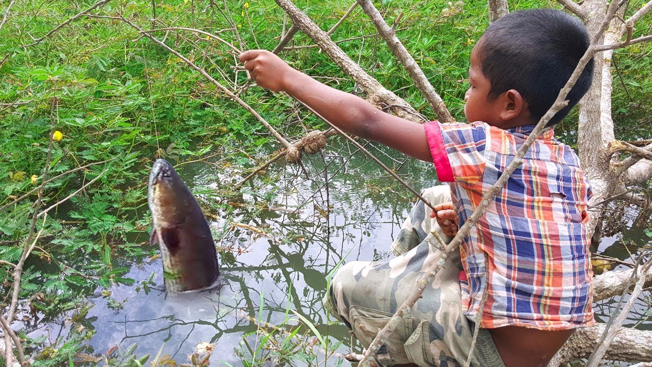 Amazing Smart Boy Goes Fishing To Survive by Himself — How to Fishing With Free Line Fishing