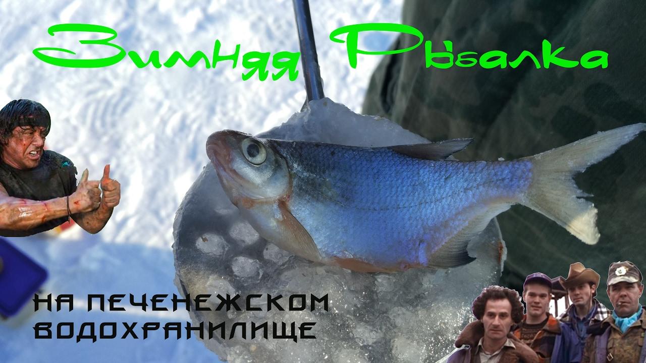 Рыбалка на Печенежском водохранилище. Глухозимье