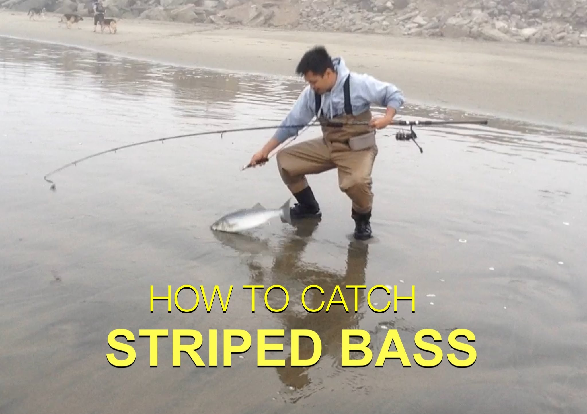 TIPS ON HOW TO CATCH STRIPED BASS — Surf Fishing