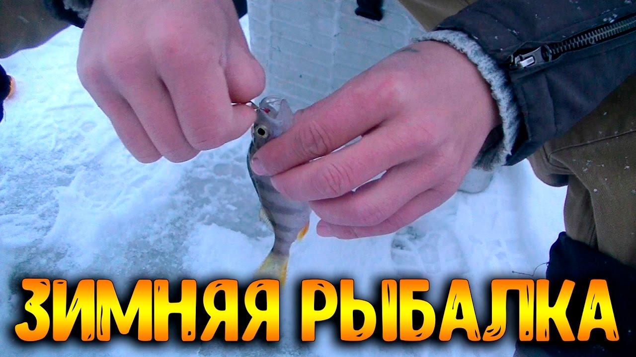 Зимняя рыбалка с Чемпионом!