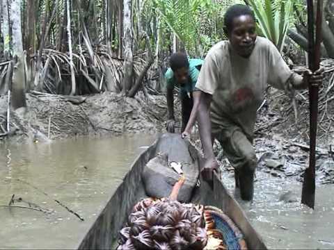 fishing — Asmat Papua