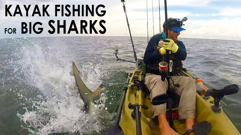 Kayak Fishing: BIG Sharks Offshore
