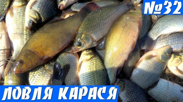 Рыбалка на Малой реке, здесь рыба Непривередливая! Карась и линь на поплавок