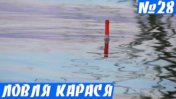 Рыбалка на карася Утром, пока не Жарко! (карась на поплавок)