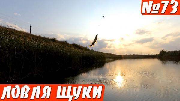 Ловля щуки на Поплавок в сентябре. Рыбалка на щуку осенью, на живца