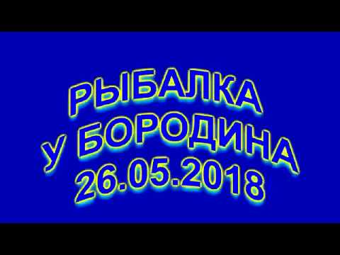Рыбалка у Бородина 26 05 2018 4K