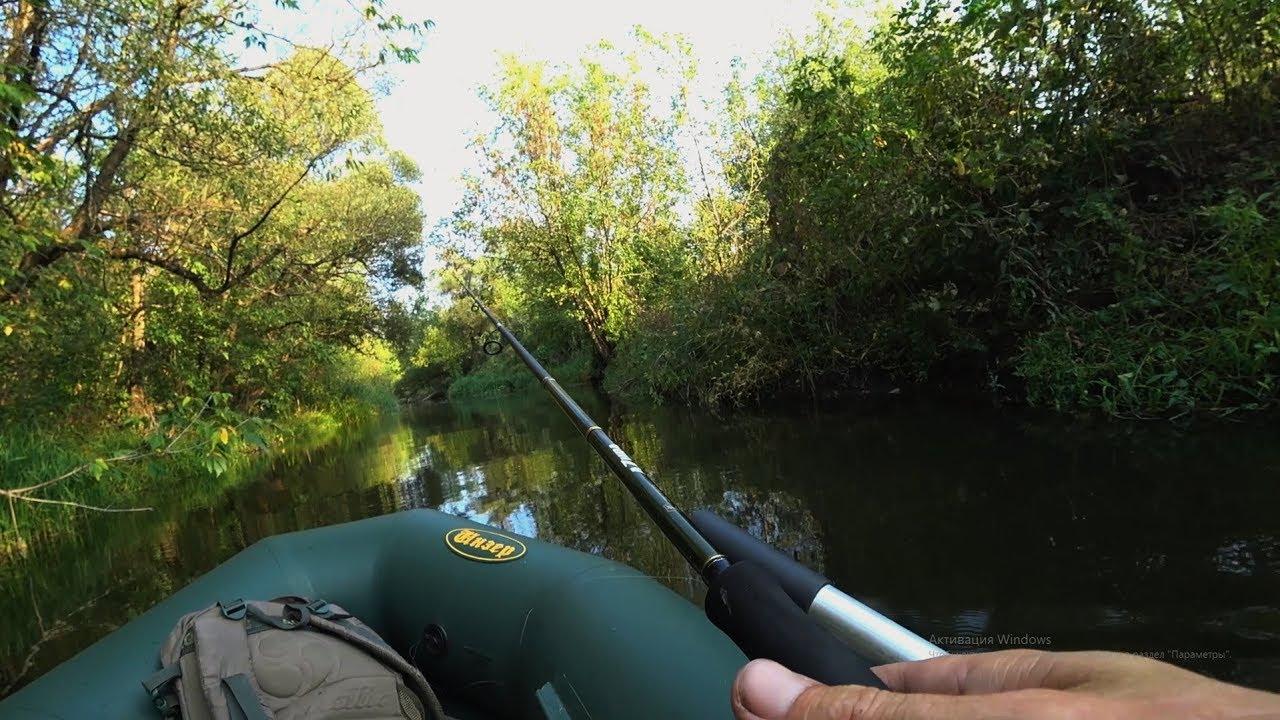 ДАВНО Я ТАКИХ НЕ ЛОВИЛ, а тут в маленькой речке поймал! Рыбалка на спиннинг осенью.