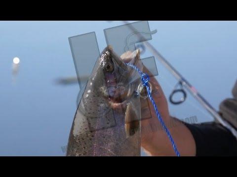 Beginner trout fishing