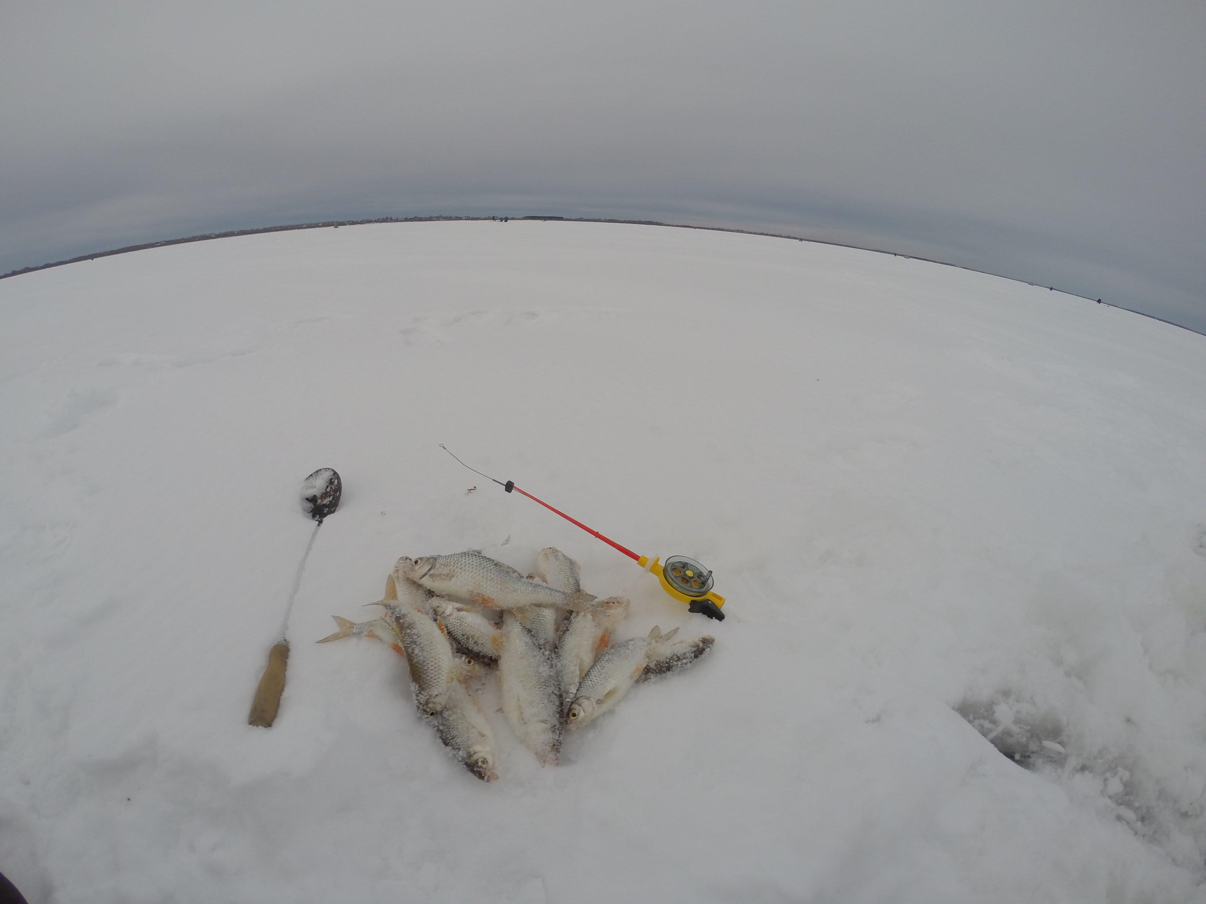Ловля плотвы в глухозимье. Зимняя рыбалка на миниатюрную мормышку с мотылем. Удочка с кивком.