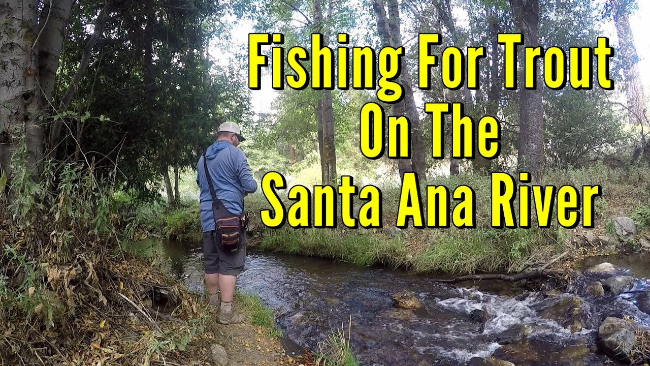 Fishing For Trout On The Santa Ana River