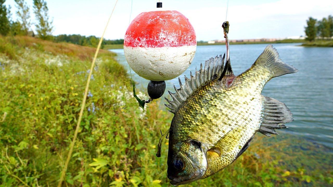 Fishing with Live Bluegill! CAUGHT MY NEW PB!!!
