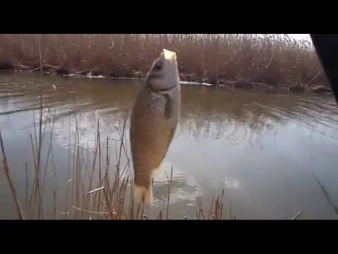 Моя рыбалка в апреле