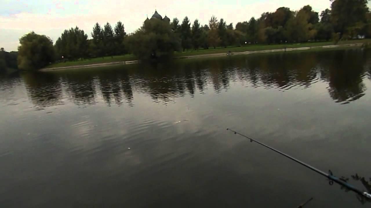 Pro рыбалка.Ловля карася  осенью на поплавочную удочку