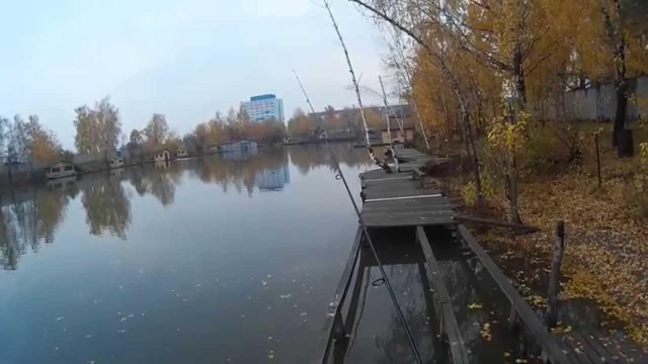 Рыбалка у Бородина. Ловля щуки. 15.10.2014
