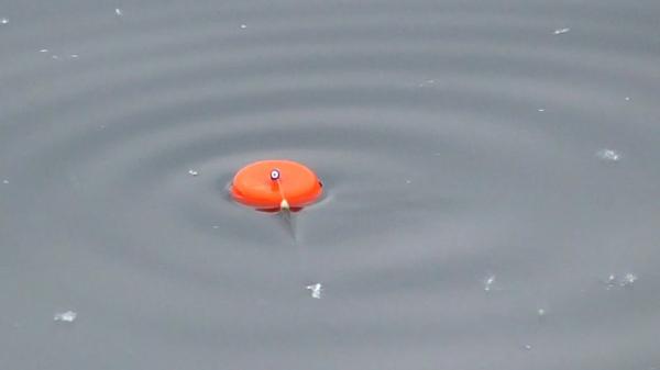 Ловля щуки на поплавок с берега! Рыбалка в конце мая начале июня!